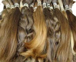 vlas5